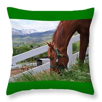 Mccool Grazing Throw Pillow