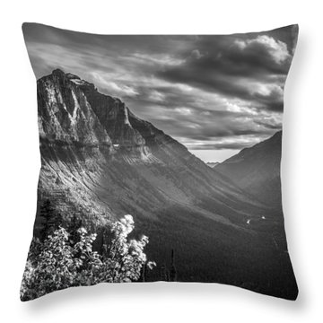 Mcdonald Valley Throw Pillow