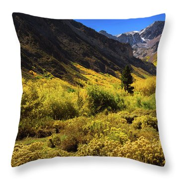Mcgee Creek Alive With Color Throw Pillow