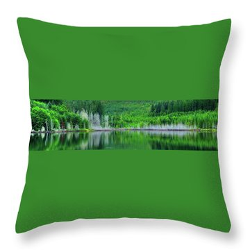 Mcguire Reservoir P Throw Pillow by Jerry Sodorff