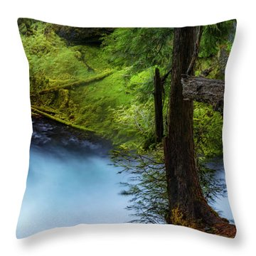 Throw Pillow featuring the photograph Mckenzie River From Sahalie Falls by Cat Connor