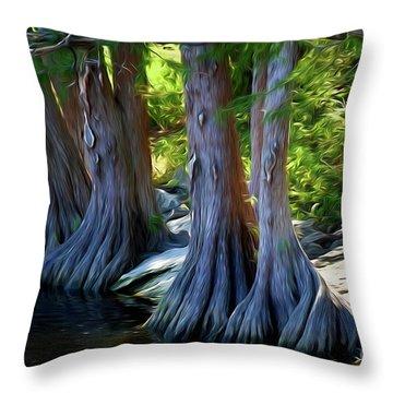 Mckinney Falls State Park - Texas 12118-2 Throw Pillow