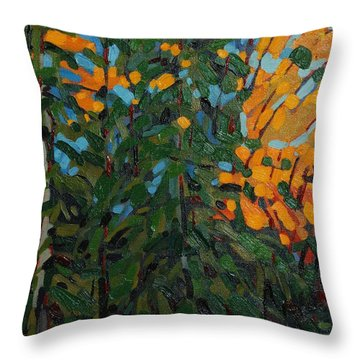 Mcmichael Forest Wall Throw Pillow