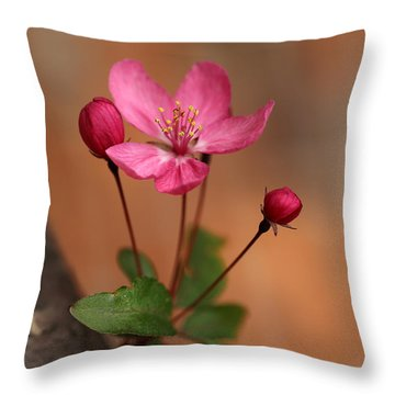 Me And My Buds 2 Throw Pillow by Mary Bedy