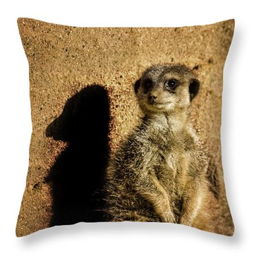 Me And My Shadow Throw Pillow