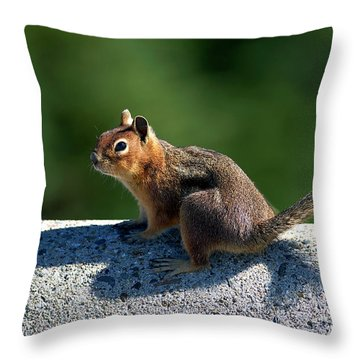Throw Pillow featuring the photograph Me And My Shadow by Sharon Talson