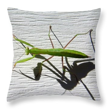 Throw Pillow featuring the photograph Me And My Shadow by Will Borden