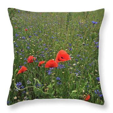 Meadow Beauty Throw Pillow
