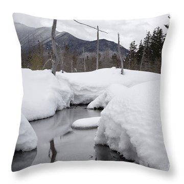 Meadow Brook - White Mountains New Hampshire  Throw Pillow by Erin Paul Donovan
