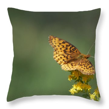 Meadow Fritillary Throw Pillow
