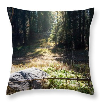 Meadow Throw Pillow By Kimberly Valentine
