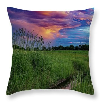 Meadow Lark Throw Pillow