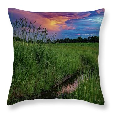 Throw Pillow featuring the photograph Meadow Lark by Kendall McKernon
