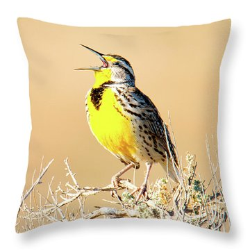 Meadow Lark Throw Pillow