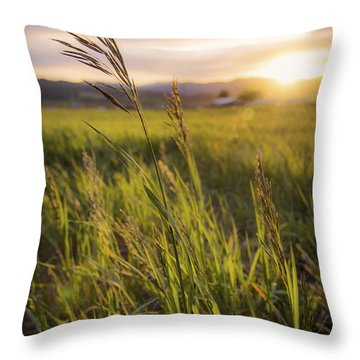 Meadow Light Throw Pillow