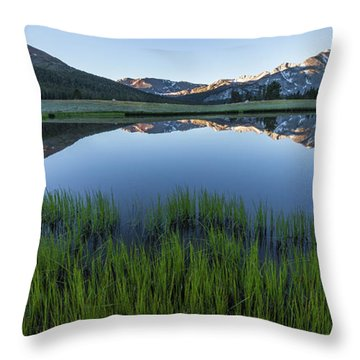 Meadow Reflections  Throw Pillow