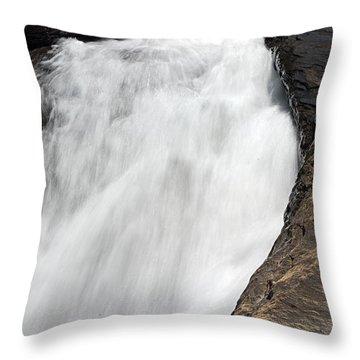 Meadow Run Water Slide 1 Throw Pillow