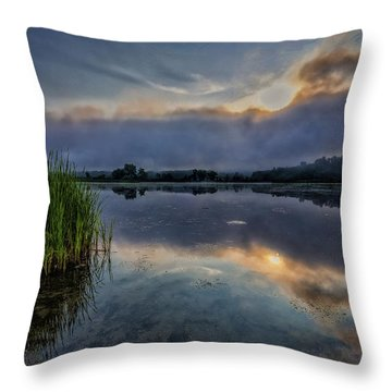 Meadows Morning Throw Pillow