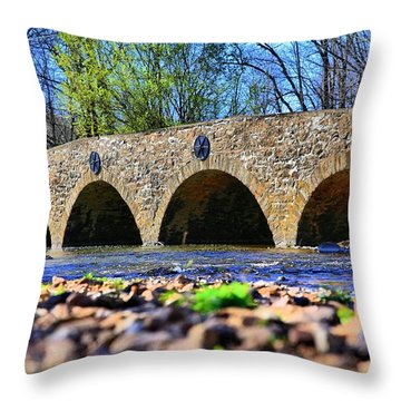 Throw Pillow featuring the photograph Meadows Road Bridge by DJ Florek