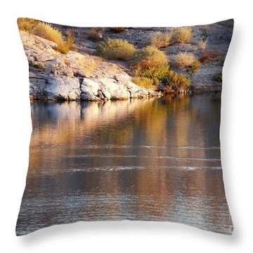 Meads Fascination Throw Pillow
