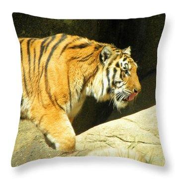 Throw Pillow featuring the photograph Meal Time by Sandi OReilly