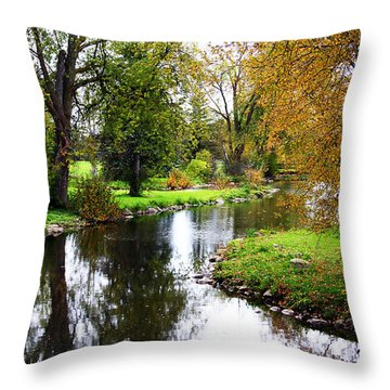 Meandering Creek In Autumn Throw Pillow