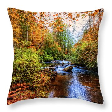 Throw Pillow featuring the photograph Meandering In The Mountains by Debra and Dave Vanderlaan