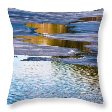 Meandering Towards Spring Throw Pillow