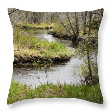 Meandering Throw Pillow