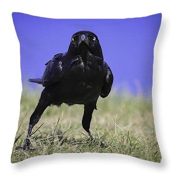 Menacing Crow Throw Pillow