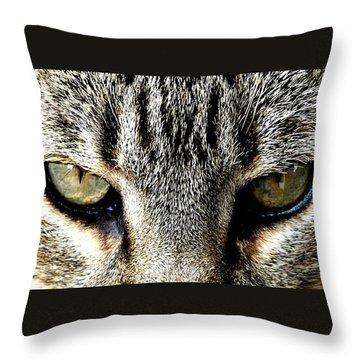 Me...dangerous...never. Throw Pillow by Valerie Ornstein