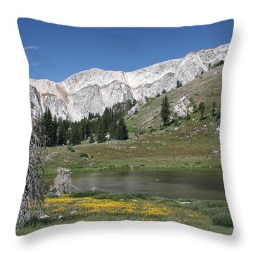 Medicine Bow Peak Throw Pillow