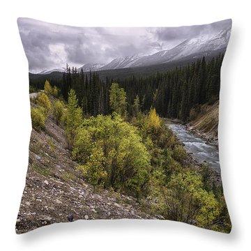 Medicine Delta Throw Pillow