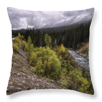 Medicine Delta Throw Pillow