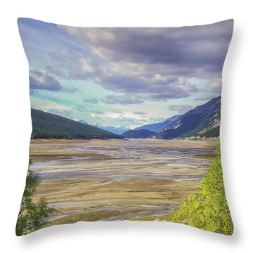 Throw Pillow featuring the photograph Medicine Lake Bed 2006 by Jim Dollar
