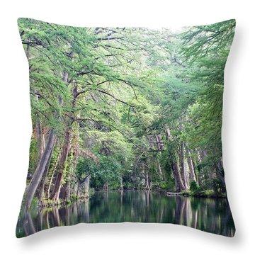 Medina Creek In Summer Throw Pillow