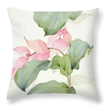 Medinilla Magnifica Throw Pillow by Sarah Creswell