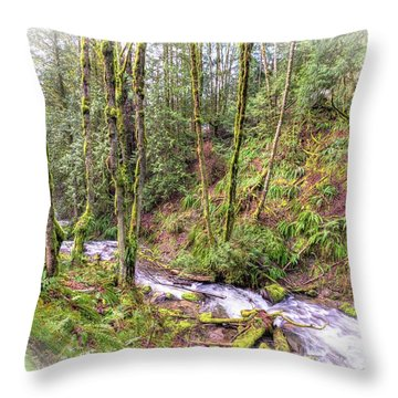 Meditation In The Woods Throw Pillow by Spencer McDonald
