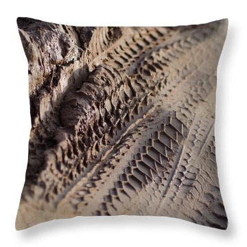 Throw Pillow featuring the photograph Medium Cu Motorcycle And Car Tracks In Mud by Jason Rosette