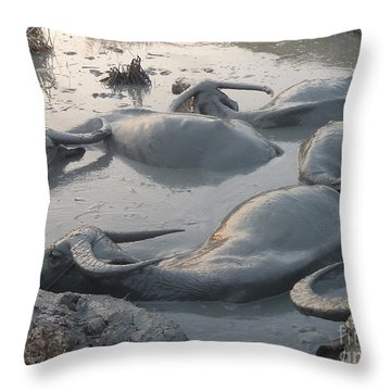 Throw Pillow featuring the photograph Medium Shot Of A Group Of Water Buffalos Wallowing In A Mud Hole by Jason Rosette