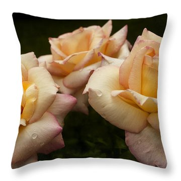 Medley Of Three Yellow Roses Throw Pillow