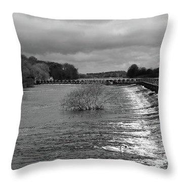 Meelick Weir Throw Pillow