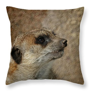 Meerkat 3 Throw Pillow by Ernie Echols