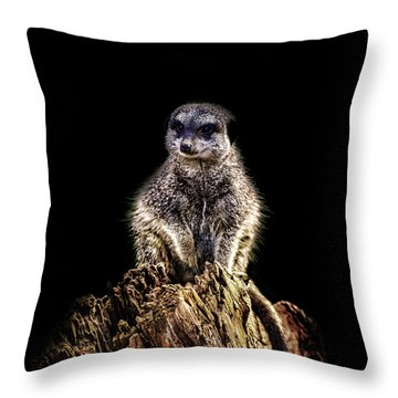 Meerkat Lookout Throw Pillow