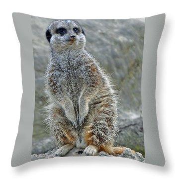 Meerkat Poses Throw Pillow