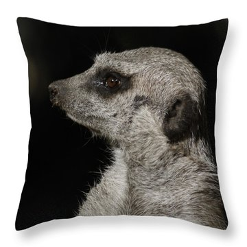 Meerkat Profile Throw Pillow by Ernie Echols
