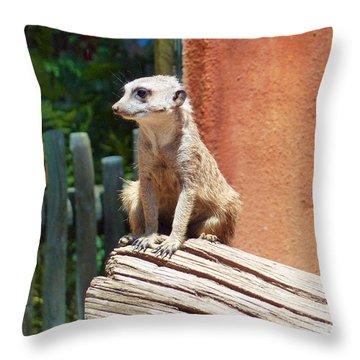 Meerkat Sentry Throw Pillow