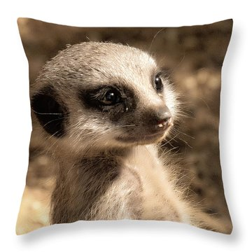 Meerkatportrait Throw Pillow