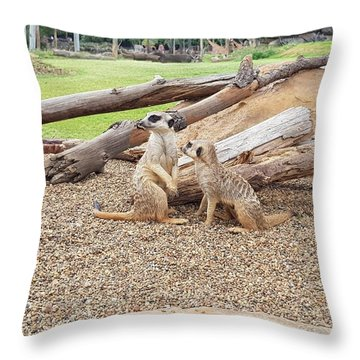Meerkats  Throw Pillow