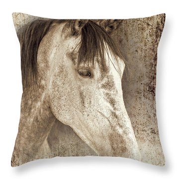 Meet The Andalucian Throw Pillow by Meirion Matthias